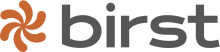 birst business intelligence tools