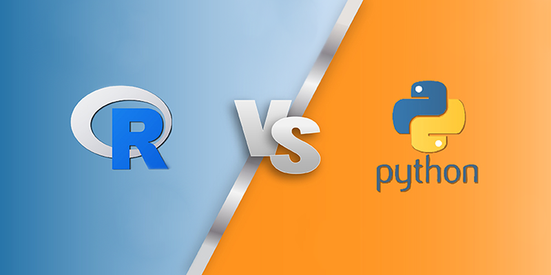 R vs Python for Data Science: What's the Difference? | EzDataMunch